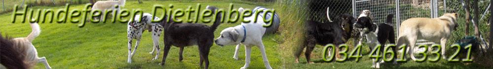 hundeferien-dietlenberg-standard